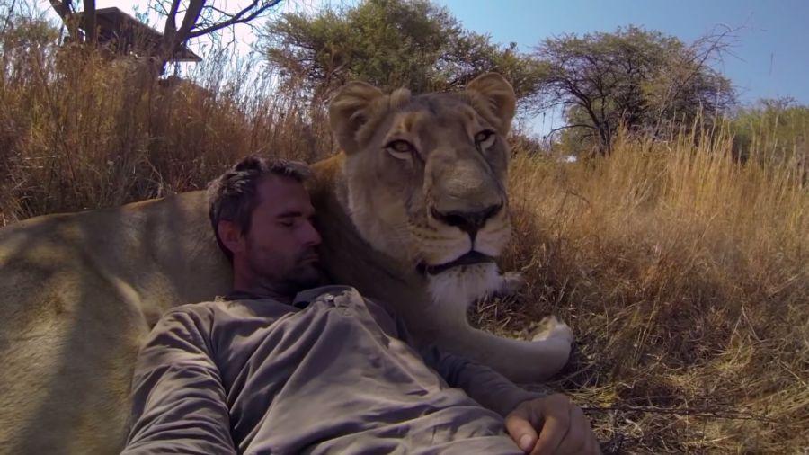 Kevin Richardson Hug's a Wild Lion